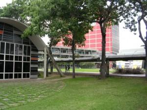 sector-universitario