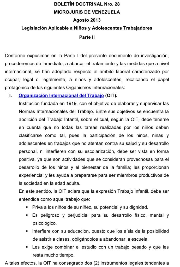 BOLETÍN  DOCTRINAL Nº 28