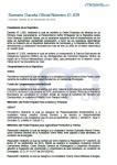 sumario-n-41-039